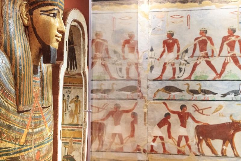 Collections égyptienne au musée de Boulogne-sur-Mer