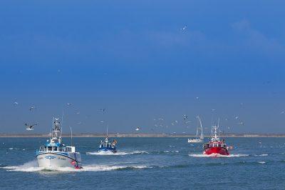 Bateaux de pêche dans le port de Boulogne
